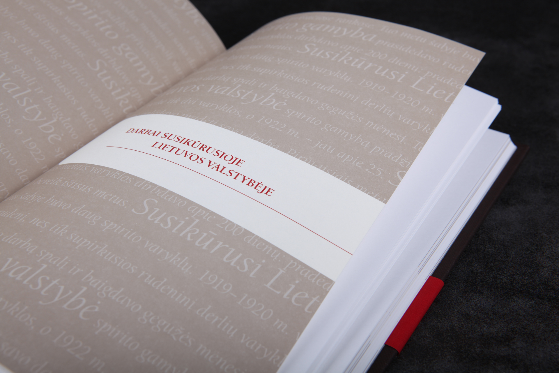 Stumbras Book